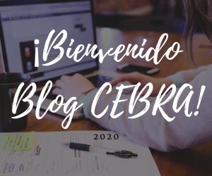 blog-bienvenida-1.png